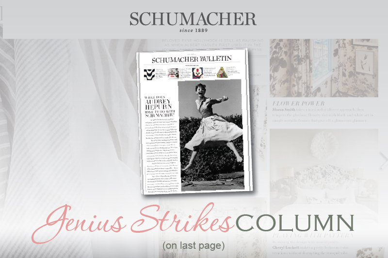 SchumacherBulletin 2016